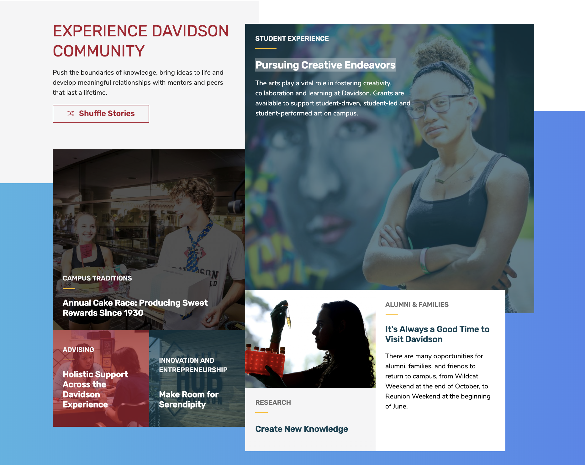 Screenshot of Experience Davidson Grid with photos in colorful boxes