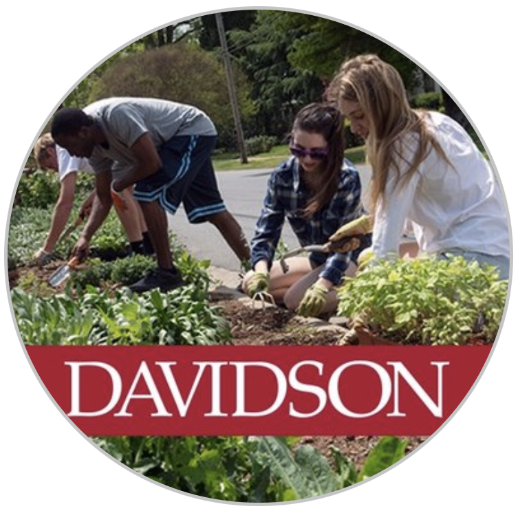 Round avatar with photo of students doing planting with Davidson wordmark