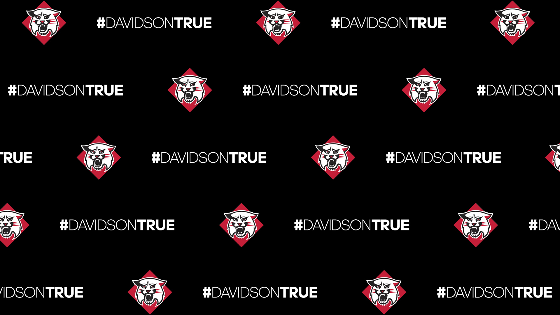Black Background with Wildcat and #DAVIDSONTRUE