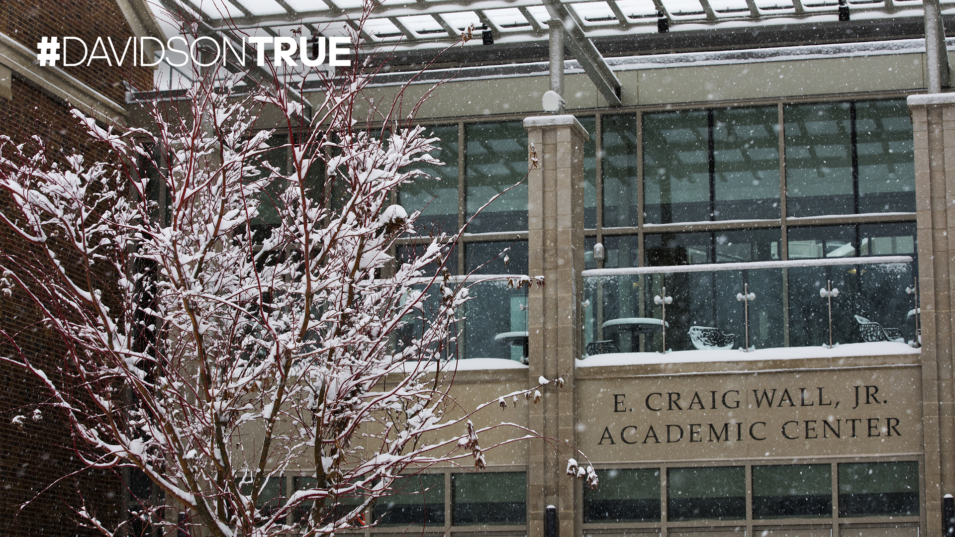 Wall Building and snowy tree with Davidson True wordmark