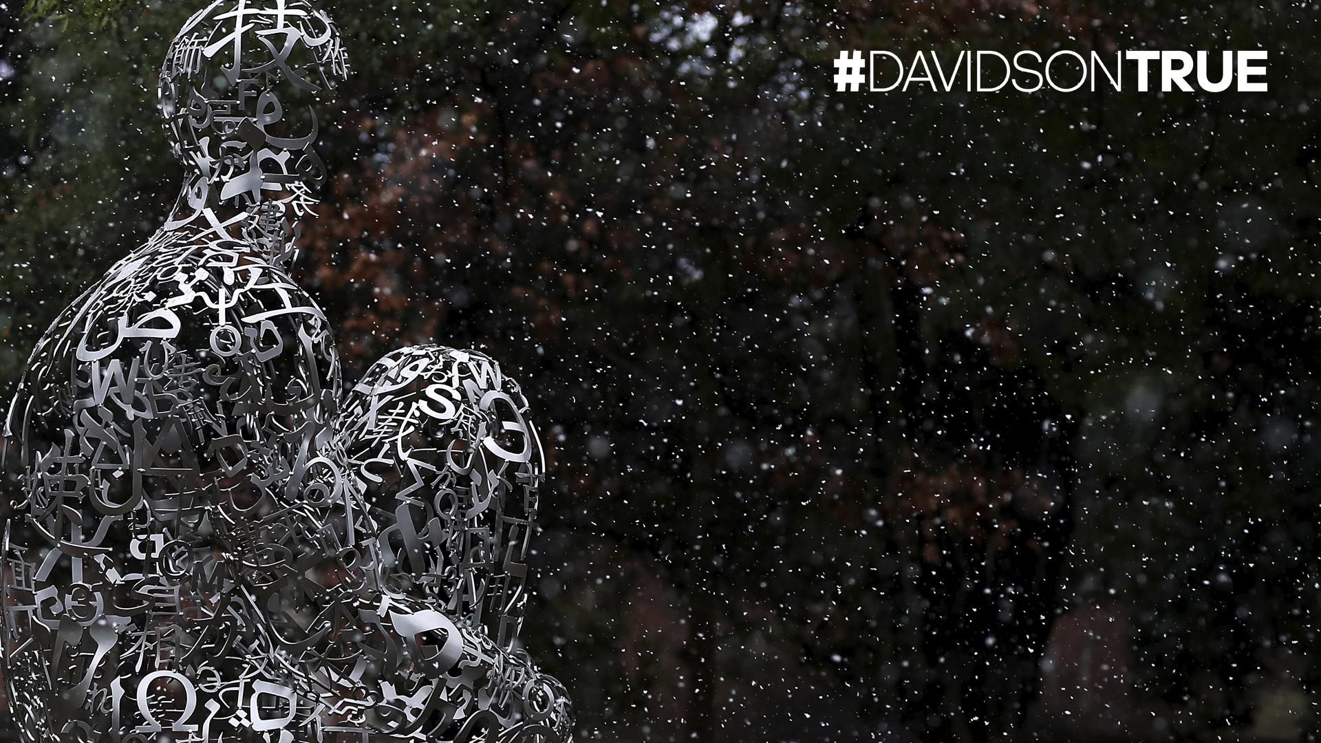 Plensa sculpture and Davidson True wordmark